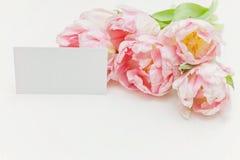 Cartolina d'auguri di marzo otto del giorno delle donne Fotografie Stock