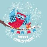 Cartolina d'auguri di Natale con il gufo Fotografie Stock