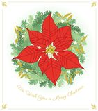 Cartolina d'auguri di Natale con la stella di Natale royalty illustrazione gratis