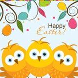 Cartolina d'auguri di Pasqua del modello, pulcino, vettore Immagini Stock