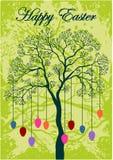 Cartolina d'auguri di Pasqua, uova sul ramo Fotografia Stock