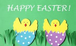 Cartolina d'auguri fatta a mano di Pasqua: pollo covato in guscio d'uovo isolato sul fondo del fiore Immagine Stock Libera da Diritti