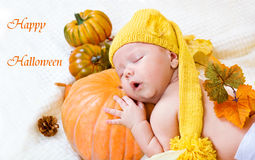 Cartolina d'auguri felice di Halloween Fotografia Stock