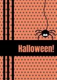 Cartolina d'auguri felice di Halloween con l'attaccatura sulla linea insetto del un poco del Web spider Personaggio dei cartoni a illustrazione di stock