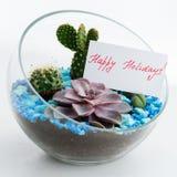 Cartolina d'auguri in florarium, feste felici Fotografia Stock