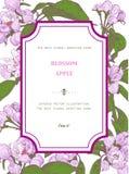 Cartolina d'auguri floreale d'annata con Apple di fioritura royalty illustrazione gratis
