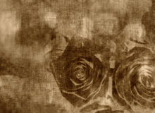 Cartolina d'auguri Grungy, carta di San Valentino con le rose Fotografia Stock
