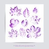 Cartolina d'auguri Insieme con le foglie, insieme del fumetto di vettore Fotografia Stock