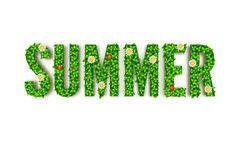 Cartolina d'auguri, iscrizione in lettere maiuscole e foglie verdi di estate con gli scarabei dei fiori, coccinella Fotografia Stock