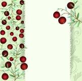 Cartolina d'auguri, mirtilli rossi su un ramo Fotografia Stock Libera da Diritti
