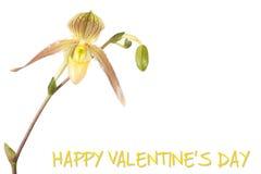 Cartolina d'auguri per il giorno del biglietto di S. Valentino immagini stock libere da diritti