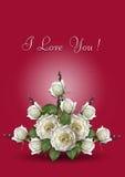 Cartolina d'auguri rossa con un mazzo delle rose bianche Immagine Stock