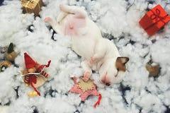 Cartolina degli elfi di Santa Fotografie Stock Libere da Diritti