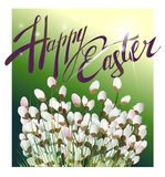 Cartolina del salice purulento Immagine di Pasqua illustrazione vettoriale