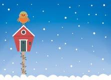 Cartolina della casa di inverno di Robin immagini stock