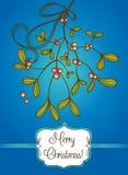 Cartolina di Natale blu con il ramo del vischio Fotografia Stock Libera da Diritti