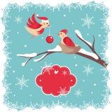 Cartolina di Natale con gli uccelli Immagini Stock