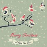 Cartolina di Natale con gli uccelli Fotografie Stock Libere da Diritti