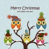 Cartolina di Natale con i gufi Fotografia Stock Libera da Diritti