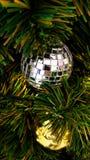 Cartolina di Natale con i rami, i mandarini, le pigne ed il de dell'abete Fotografia Stock