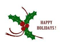 Cartolina di Natale con il vischio Immagini Stock Libere da Diritti