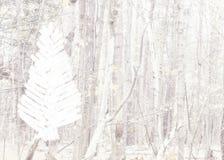 Cartolina di Natale con l'albero spazzolato su un fondo del paesaggio della foresta Fotografia Stock Libera da Diritti