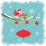 Cartolina di Natale con l'uccello Immagini Stock