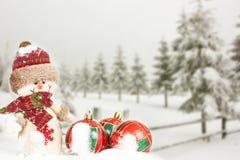 Cartolina di Natale con le decorazioni di Natale e gli alberi nevosi Immagini Stock Libere da Diritti