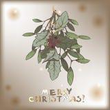 Cartolina di Natale d'annata di colore con le decorazioni del ramo del vischio Fotografie Stock Libere da Diritti