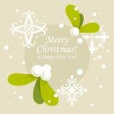Cartolina di Natale del vischio Fotografia Stock