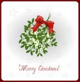 Cartolina di Natale del vischio Immagine Stock Libera da Diritti