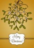 Cartolina di Natale dell'oro con il ramo del vischio Immagini Stock Libere da Diritti