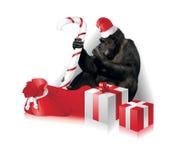 Cartolina di Natale divertente Immagine Stock Libera da Diritti