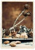 Cartolina di Natale elegante con la struttura della foto isolata su bianco Fotografie Stock