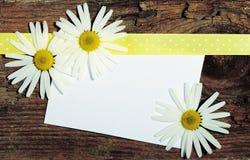 Cartolina di saluto Fotografia Stock Libera da Diritti