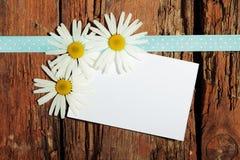Cartolina di saluto Immagini Stock