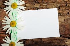 Cartolina di saluto Immagini Stock Libere da Diritti