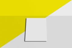 Cartolina e copertura del modello Carta del Libro Bianco sul fondo di colore e di grey Immagine Stock Libera da Diritti