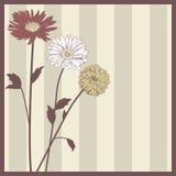 Cartolina elegante d'annata del fiore Fotografia Stock Libera da Diritti