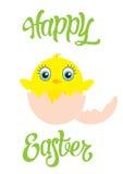 Cartolina felice di Pasqua con il pollo sveglio in uovo Immagini Stock Libere da Diritti