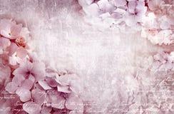 Cartolina floreale dell'ortensia Può essere usato come la cartolina d'auguri, l'invito per nozze, il compleanno ed altro avvenime Fotografia Stock Libera da Diritti