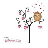 Cartolina: Giorno di biglietti di S. Valentino felice Gufo di Fanny su un albero con i cuori Immagine Stock Libera da Diritti