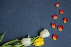 Cartolina, modello, saluti di festa con i bei fiori fotografia stock