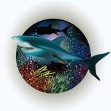 Cartolina subacquea con lo squalo Fotografia Stock Libera da Diritti