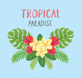 Cartolina tropicale Fondo di estate con il frangipane, l'ibisco e le foglie di palma Fotografie Stock