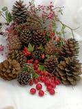 Cartoline di Natale con le bacche ed i pini del cono Fotografie Stock