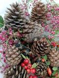 Cartoline di Natale con le bacche ed i pini del cono Fotografia Stock