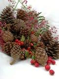 Cartoline di Natale con le bacche ed i pini del cono Immagine Stock