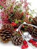 Cartoline di Natale mediche Fotografie Stock Libere da Diritti