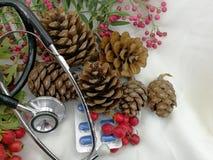 Cartoline di Natale mediche con le bacche e le pigne Immagini Stock Libere da Diritti